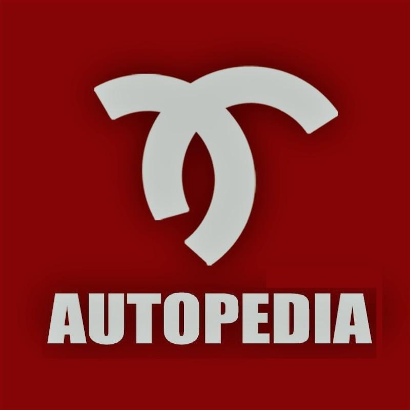AUTOPEDIA INC