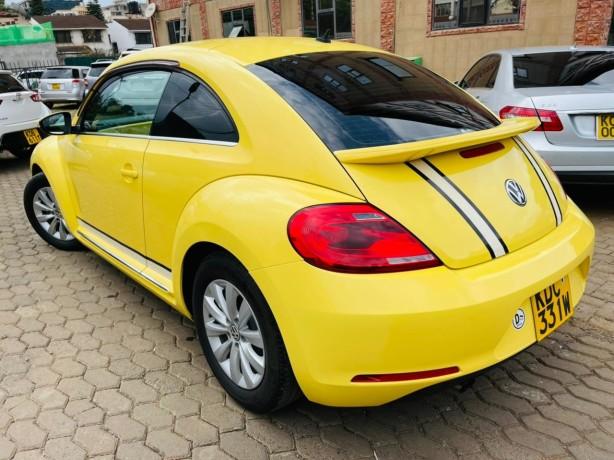 volkswagen-beetle-tsi-big-5